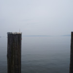AWW_Ammersee2013_22